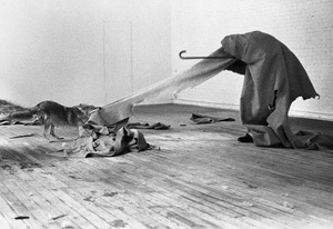 Beuys coyote 09 sized1
